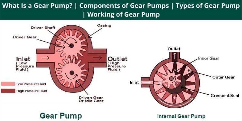 Components of Gear Pumps