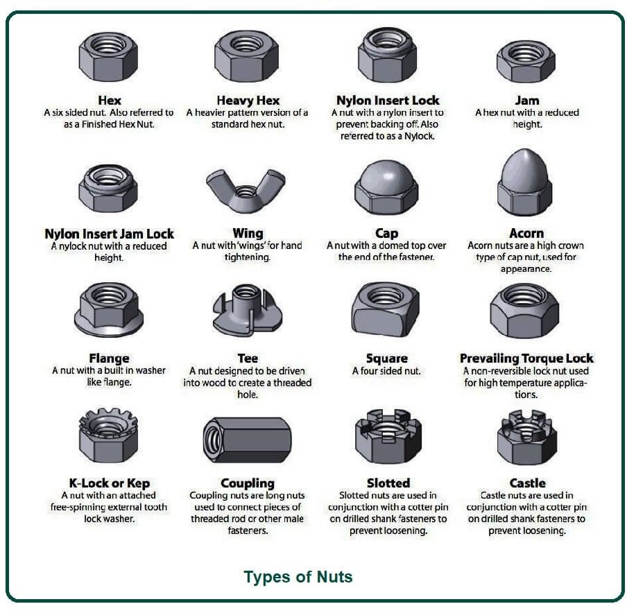Types of Nuts.