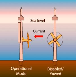 Axial Flow Marine Turbines