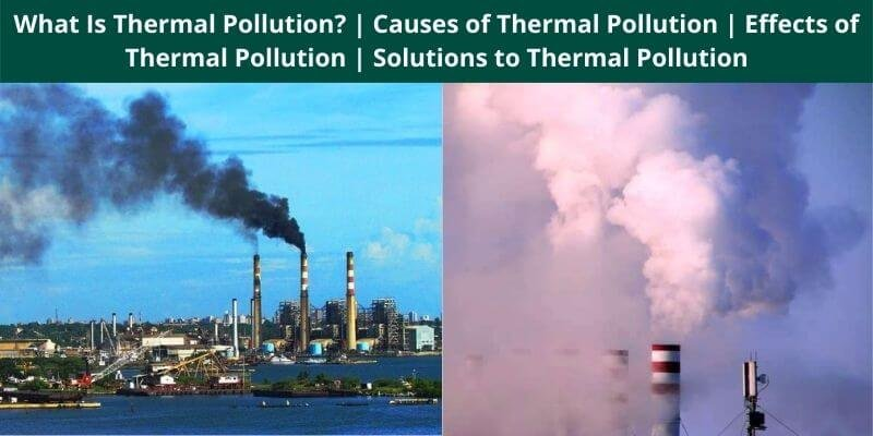 What Is Thermal Pollution Causes of Thermal Pollution Effects of Thermal Pollution Solutions to Thermal Pollution